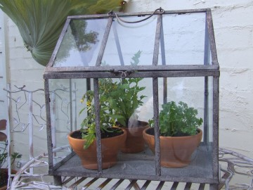 Table top Glass house